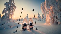 Afbeeldingsresultaat voor enjoy the wilde nordic rovaniemi